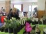 Spring Market 2015